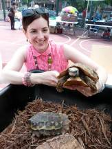 Turtle lover and hingeback tortoise