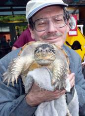 Turtle lover and common snapping turtle.